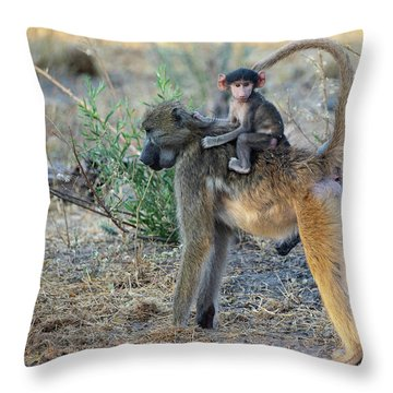Baboon And Baby Throw Pillow