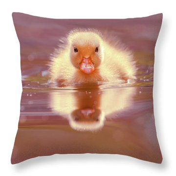 Baby Animal Series - Baby Duckling Throw Pillow