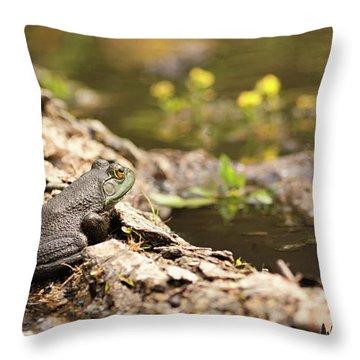Baby Bullfrog Throw Pillow