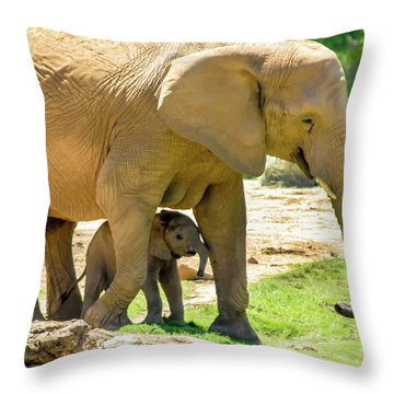 Baby's Safe House Throw Pillow