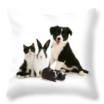 Throw Pillow featuring the photograph Back-and-white Is Alright by Warren Photographic