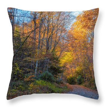 Throw Pillow featuring the photograph Back Road Beauty by Russell Pugh