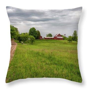 Backroad Farm 1 Throw Pillow