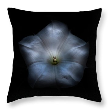 Throw Pillow featuring the photograph Backyard Flowers 24 Color Version by Brian Carson