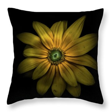 Throw Pillow featuring the photograph Backyard Flowers 34 Color Version by Brian Carson