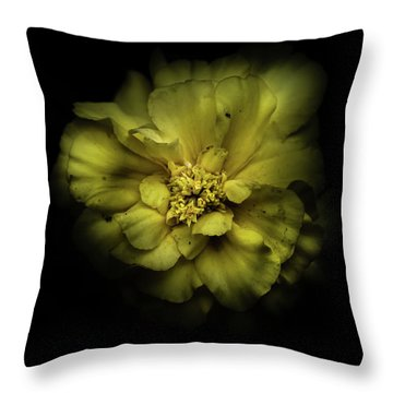 Throw Pillow featuring the photograph Backyard Flowers 41 Color Version by Brian Carson