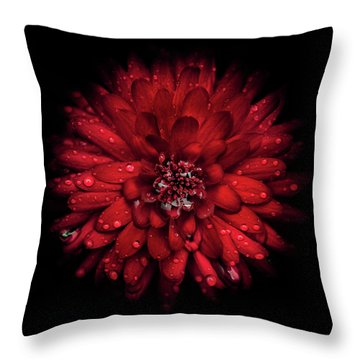 Backyard Flowers 45 Color Version Throw Pillow