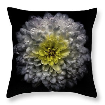 Backyard Flowers 46 Color Version Throw Pillow