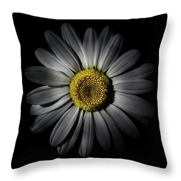 Backyard Flowers 52 Color Version Throw Pillow