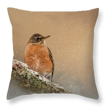 Backyard Visitor Throw Pillow