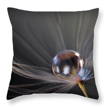 Throw Pillow featuring the photograph Balanced by Michelle Wermuth