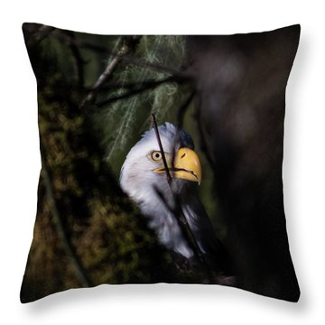 Bald Eagle Behind Tree Throw Pillow