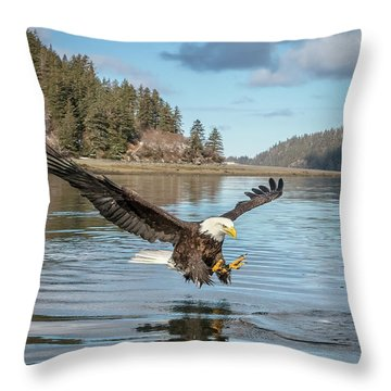 Bald Eagle Fishing In Sadie Cove Throw Pillow