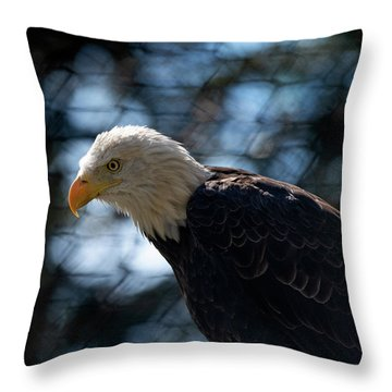 Bald Eagle Grandfather Mountain Throw Pillow
