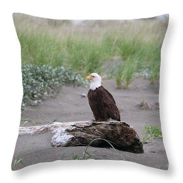 Bald Eagle On Driftwood Throw Pillow