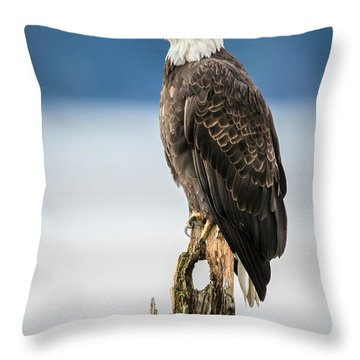 Bald Eagle On Snag Throw Pillow