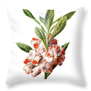 Balsam Flower Throw Pillow