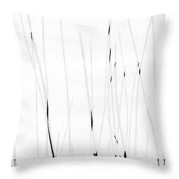 Baltic Sea #3751 Throw Pillow