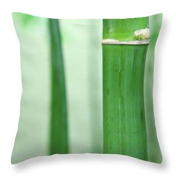 Bamboo 0312 Throw Pillow