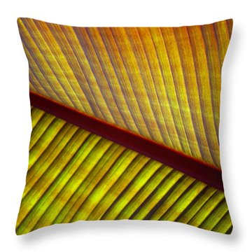 Throw Pillow featuring the photograph Banana Leaf 8603 by Mark Shoolery