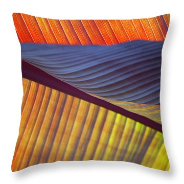 Throw Pillow featuring the photograph Banana Leaf 8613 by Mark Shoolery