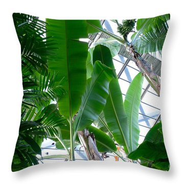 Banana Leaves In The Greenhouse Throw Pillow