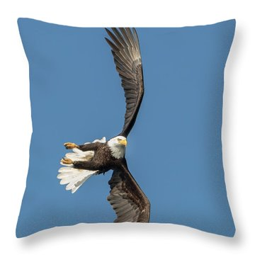 Banking Bald Eagle Throw Pillow