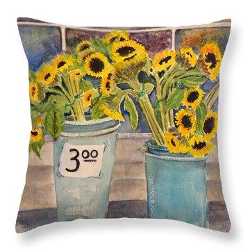 Bargain Buckets Throw Pillow