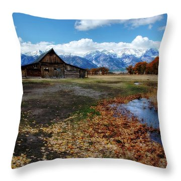 Throw Pillow featuring the photograph Barn On Mormon Row by Scott Read