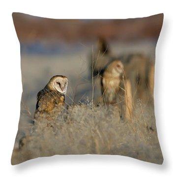 Barn Owls 9 Throw Pillow
