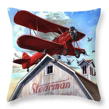 Barn Stormer - Customizeable Throw Pillow