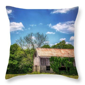 Barn With Ivy Throw Pillow