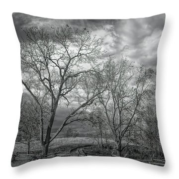 Throw Pillow featuring the photograph Barren Fields by John M Bailey
