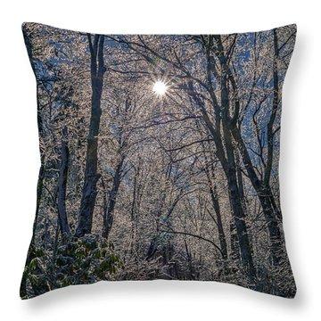 Bass Lake Frosty Throw Pillow