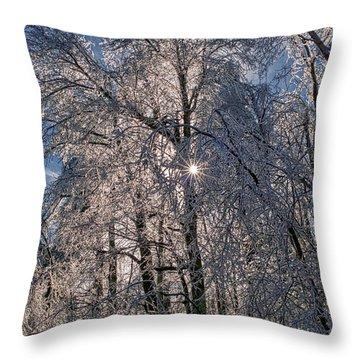Bass Lake Trees Frozen Throw Pillow