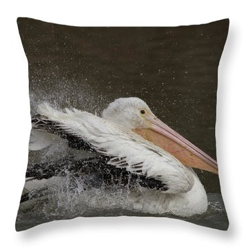 Bathing Pelican Throw Pillow