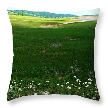 Bay Of Fundy Landscape Throw Pillow