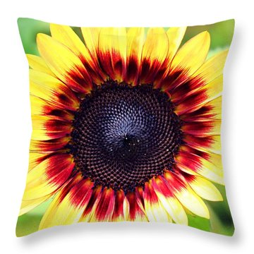 Throw Pillow featuring the photograph Be Bold by Candice Trimble