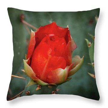 Be My Valentine Throw Pillow