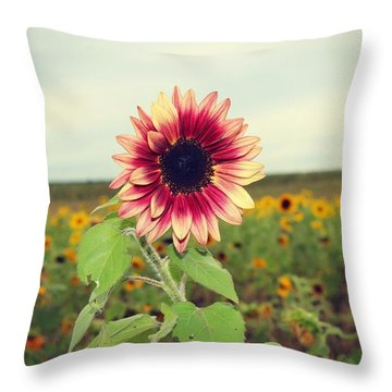 Throw Pillow featuring the photograph Be You by Candice Trimble