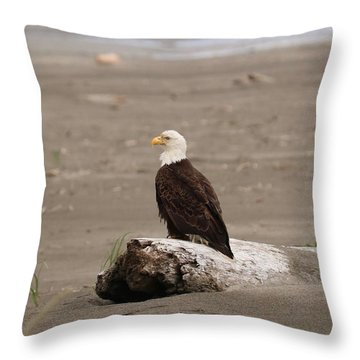 Beach Bald Eagle Throw Pillow