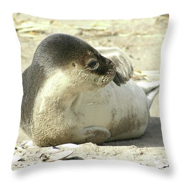 Throw Pillow featuring the photograph Beach Seal by Debbie Stahre