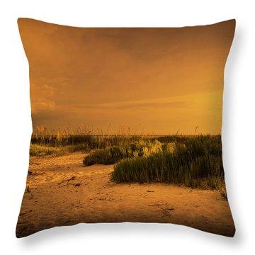 Beach Storm Front Throw Pillow