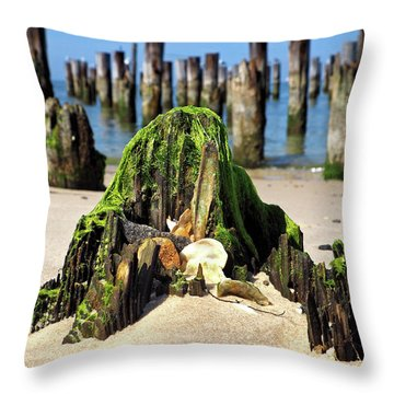 Throw Pillow featuring the photograph Beached Walrus At Cape Charles Virginia by Bill Swartwout Fine Art Photography