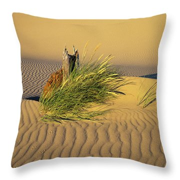 Beachgrass And Ripples Throw Pillow