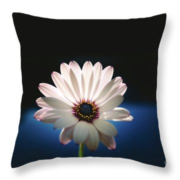 Beautiful And Delicate White Female Flower Dark Background Illum Throw Pillow