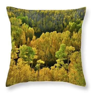 Beautiful Fall Colors At Woods Lake State Wildlife Area Throw Pillow