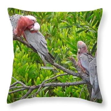 Beautiful Galah Birds With Babies. Wilsons Promontory National Park, Australia Throw Pillow