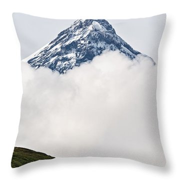 Mountainous Throw Pillows