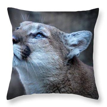 Beautiful Puma Throw Pillow